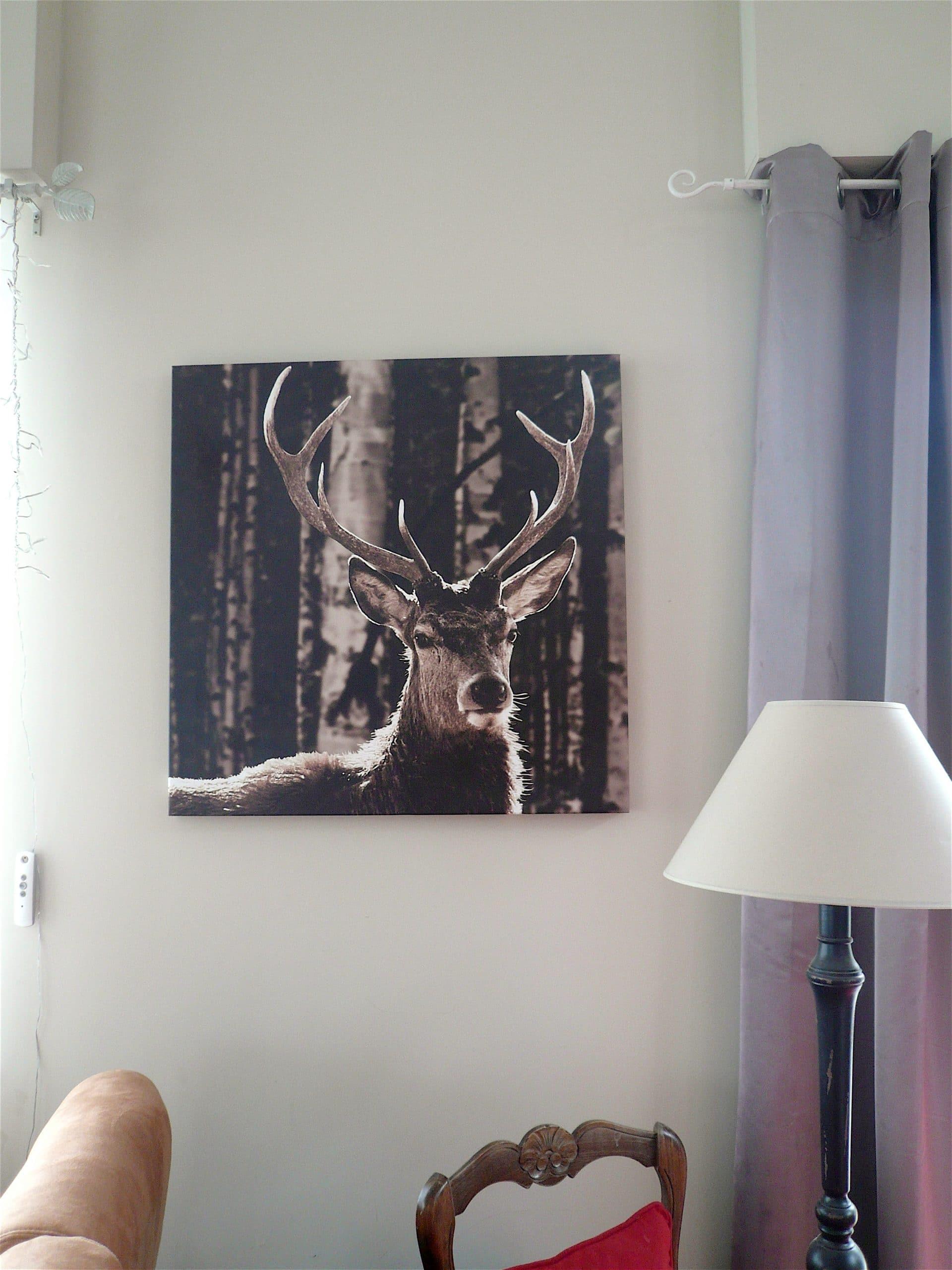 cerf foret bouleau artiste peintre d coratrice grenoble. Black Bedroom Furniture Sets. Home Design Ideas